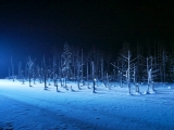 6D Snow White Hokkaido (Limited Edition)