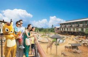 7D6N EASY GO TAIWAN + LEOFOO VILLAGE THEME PARK