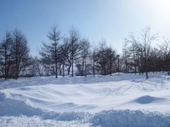 8 Days Best of Hokkaido + Hakodate
