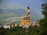 7D WESTERN BHUTAN BLACKNECK CRANE SEASON