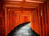 6D5N OSAKA, KYOTO & TOKYO TRIPLE FUN