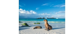 12D8N GLIMPSE OF PERU AND ECUADOR WITH GALAPAGOS ISLANDS