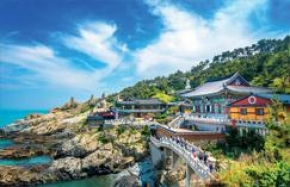 8D6N AURA OF KOREA
