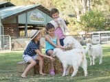 8D6N MELBOURNE, FARMSTAY AND SYDNEY
