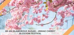 8D 6N GLAMOROUS BUSAN - JINHAE CHERRY BLOSSOM FESTIVAL