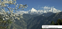 8D Golden Triangle + Kashmir Tour Package 2019-2020