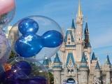 3D2N LAX + Disneyland + Universal 2020 Land Tour