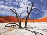11D8N ENDLESS NAMIBIA (APR - OCT)