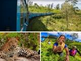 5D4N Sri Lanka Adventure