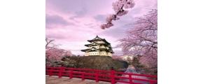 7D6N CENTRAL JAPAN BLOSSOM