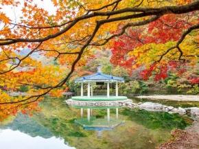 7D6N SOUTHERN BEAUTY OF KOREA (SEP -MAR20)