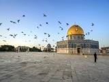 10D7N WONDERFUL ISRAEL