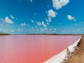 7D6N Western Australia + Pink Lake Self-Drive