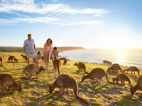 7D6N South Australia + Kangaroo Island Self-Drive