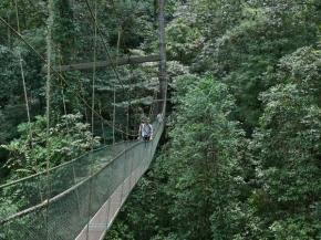 4D3N Kota Kinabalu Classic (GV2)