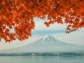 Princess 9N Sea of Japan Fall Foliage