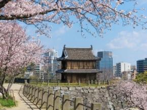 Princess Cruises 9N Kyushu Spring Flowers