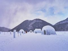 9D6N Hokkaido Winter Festival & Icebreaker